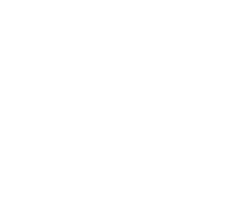 Blockchain Explorer